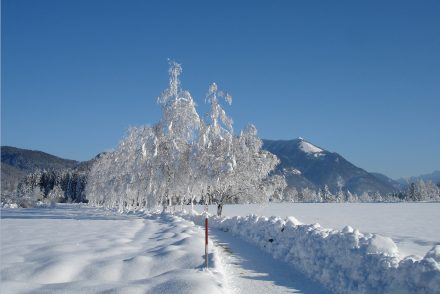 03_Winter_035